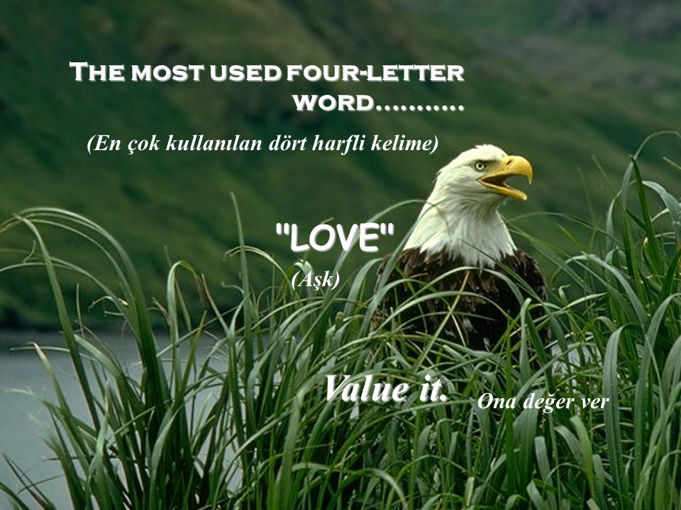 The most used four-letter word........... LOVE Value it.