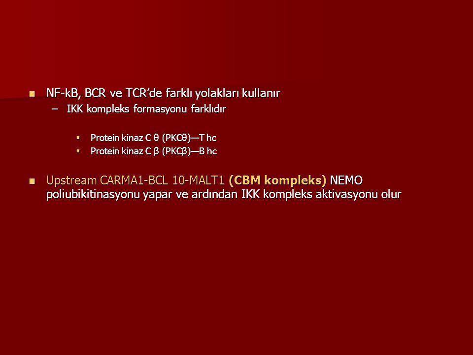 NF-kB, BCR ve TCR'de farklı yolakları kullanır NF-kB, BCR ve TCR'de farklı yolakları kullanır –IKK kompleks formasyonu farklıdır  Protein kinaz C θ (