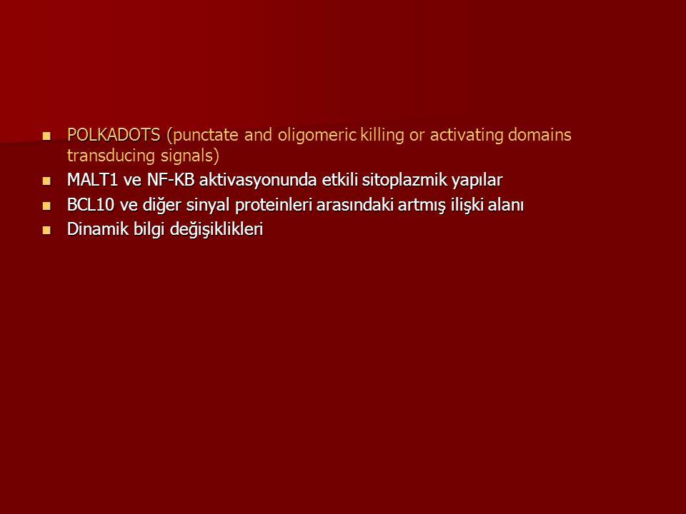 POLKADOTS ( POLKADOTS (punctate and oligomeric killing or activating domains transducing signals) MALT1 ve NF-KB aktivasyonunda etkili sitoplazmik yap