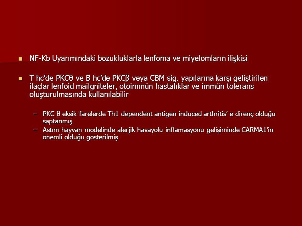 NF-Kb Uyarımındaki bozukluklarla lenfoma ve miyelomların ilişkisi NF-Kb Uyarımındaki bozukluklarla lenfoma ve miyelomların ilişkisi T hc'de PKCθ ve B