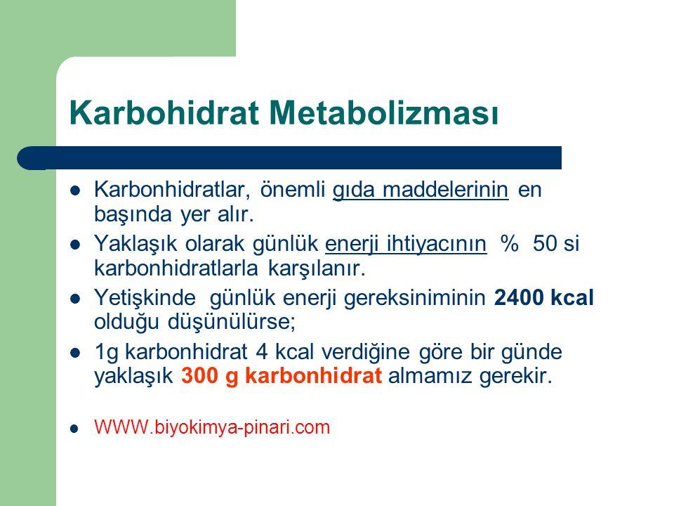 Karbohidrat Metabolizması Karbonhidratlar, önemli gıda maddelerinin en başında yer alır. Yaklaşık olarak günlük enerji ihtiyacının % 50 si karbonhidra