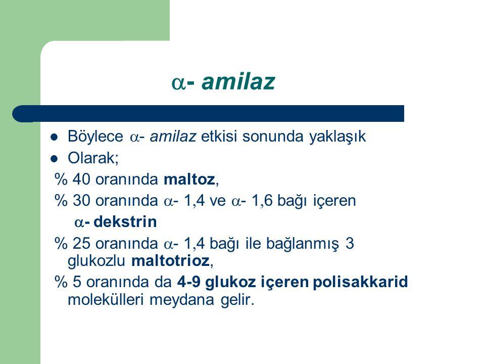  - amilaz Böylece  - amilaz etkisi sonunda yaklaşık Olarak; % 40 oranında maltoz, % 30 oranında  -  1  4 ve  -  1  6 bağı
