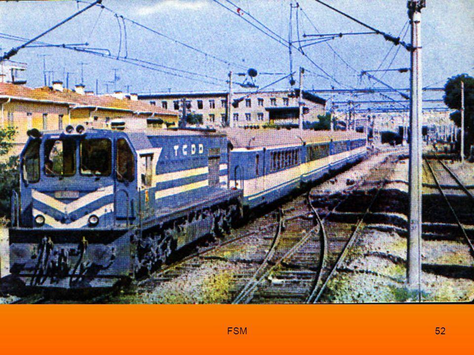 FSM51