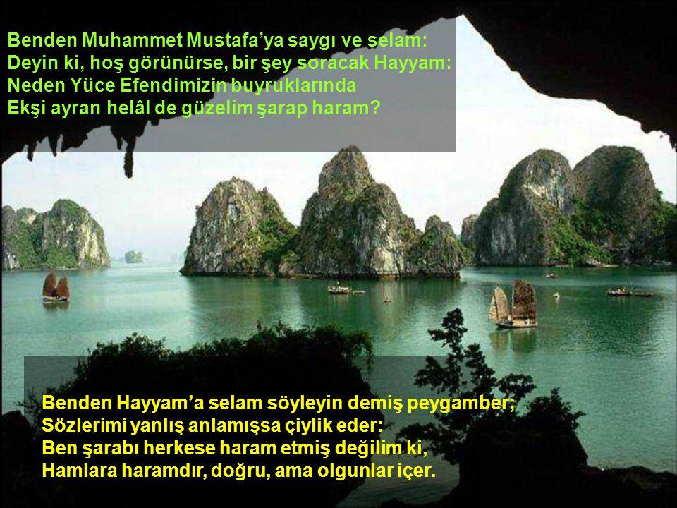 Benden Muhammet Mustafa'ya saygı ve selam: Deyin ki, hoş görünürse, bir şey soracak Hayyam: Neden Yüce Efendimizin buyruklarında Ekşi ayran helâl de g