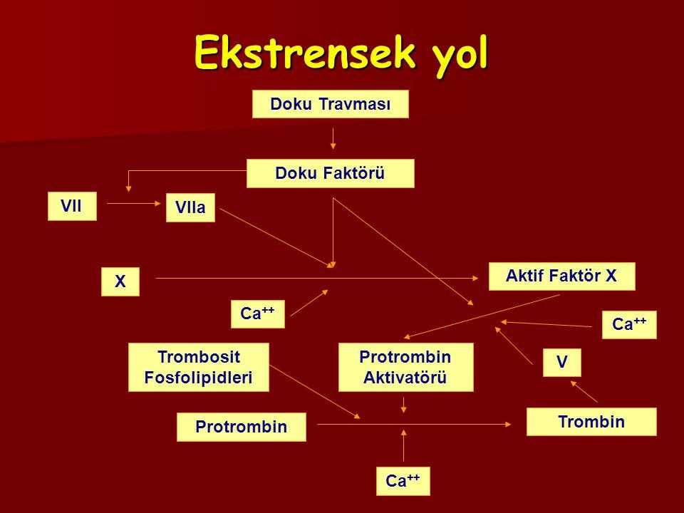 Santral blok uygulanmışsa; Santral blok uygulanmışsa; –Nörolojik monitörizasyon uygulanmalıdır.