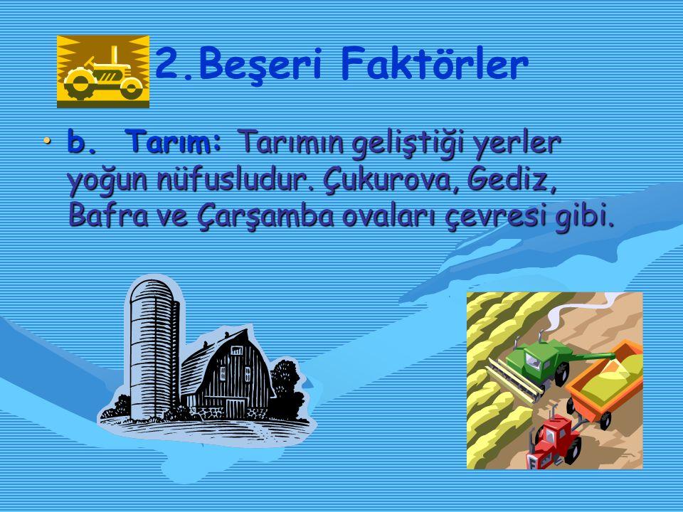 2. Beşeri Faktörler a. Sanayileşme: Bütün Dünya'da olduğu gibi Türkiye'de de, sanayileşmenin arttığı yerlerde nüfus yoğunluğu artmıştır. İstanbul, İzm