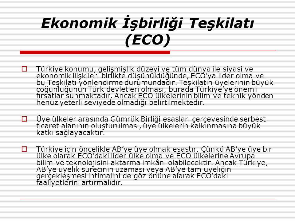 Ekonomik İşbirliği Teşkilatı (ECO)  Türkiye konumu, gelişmişlik düzeyi ve tüm dünya ile siyasi ve ekonomik ilişkileri birlikte düşünüldüğünde, ECO'ya