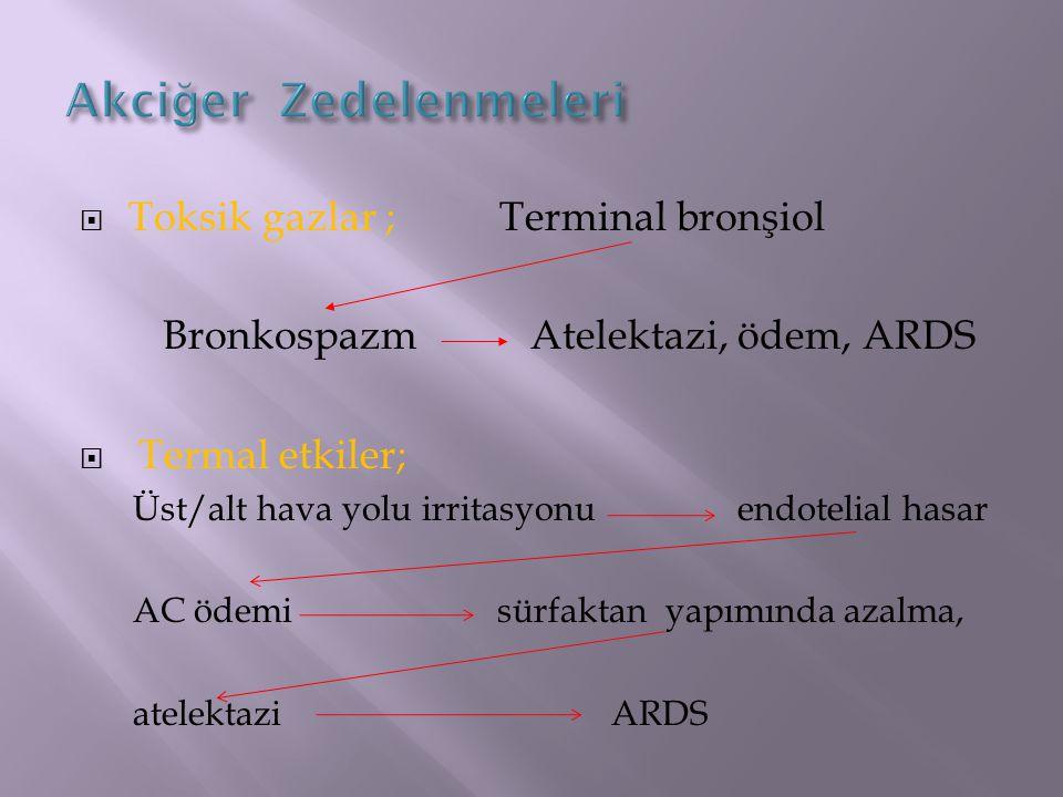  Genel görünüşte ;  Genel durum bozukluğu  Şuur durum değişikliği  Siyanoz  Gözünde, ağız çevresinde, kaş ve burun kıllarındaki yanıklar  Ses kısıklığı  Siyah renkli balgam  Yüz ve perioral bölgede tam kat yanıklar  Dairesel olarak boynun yandığı durumlar  Solunum Sıkıntısı Bulguları