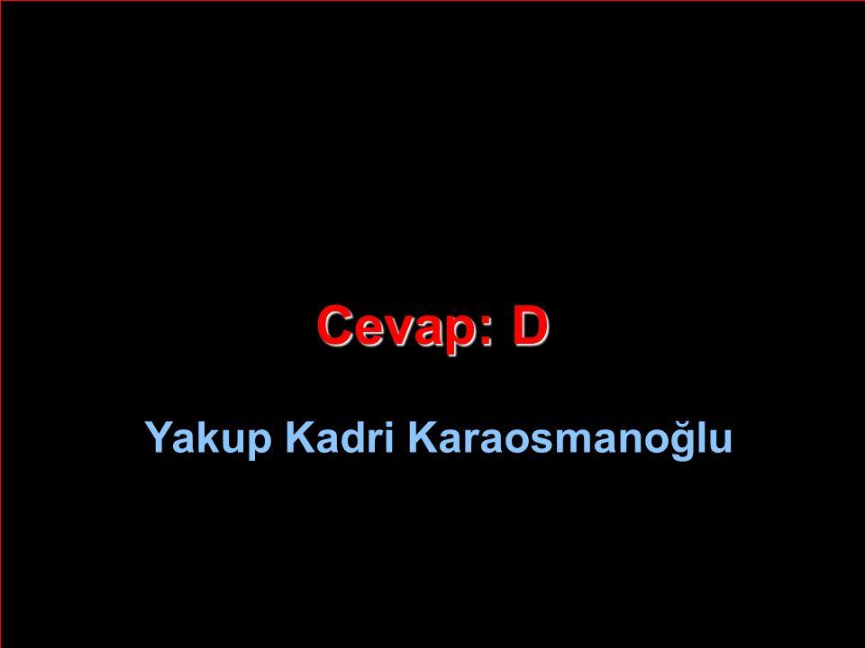 Cevap: D Yakup Kadri Karaosmanoğlu
