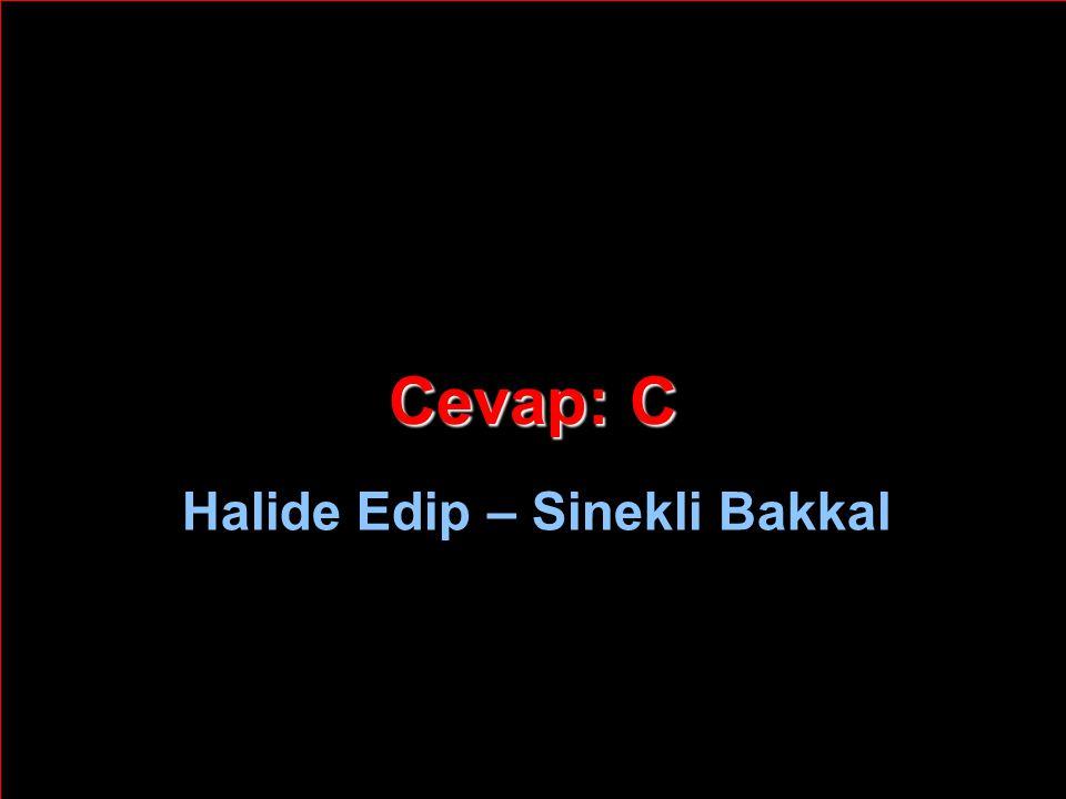 Cevap: C Halide Edip – Sinekli Bakkal