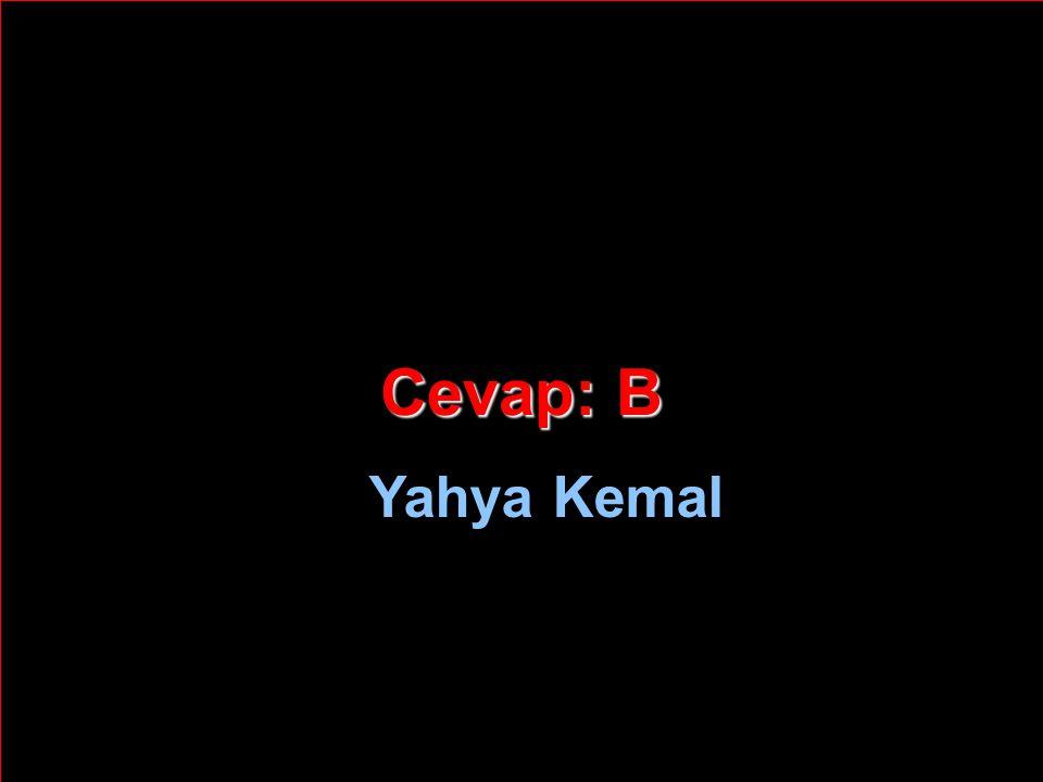 Cevap: B Yahya Kemal