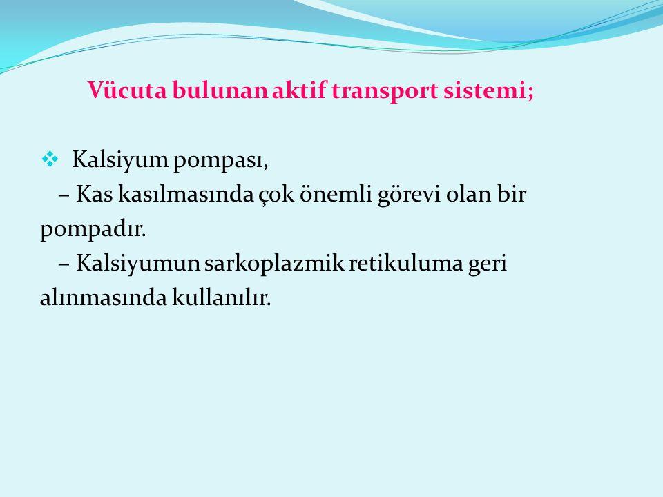 Vücuta bulunan aktif transport sistemi;  Kalsiyum pompası, – Kas kasılmasında çok önemli görevi olan bir pompadır. – Kalsiyumun sarkoplazmik retikulu