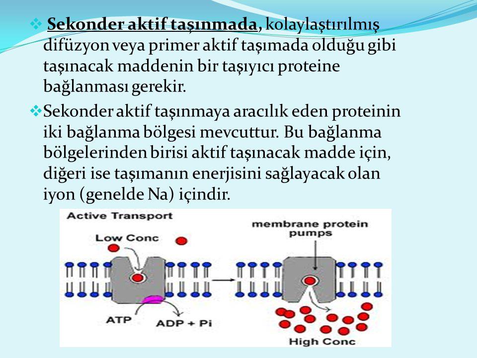  Sekonder aktif taşınmada, kolaylaştırılmış difüzyon veya primer aktif taşımada olduğu gibi taşınacak maddenin bir taşıyıcı proteine bağlanması gerek
