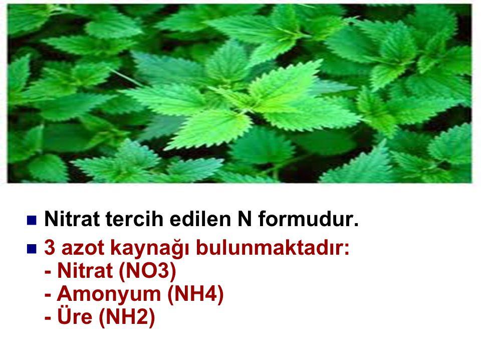 Nitrat tercih edilen N formudur. 3 azot kaynağı bulunmaktadır: - Nitrat (NO3) - Amonyum (NH4) - Üre (NH2)