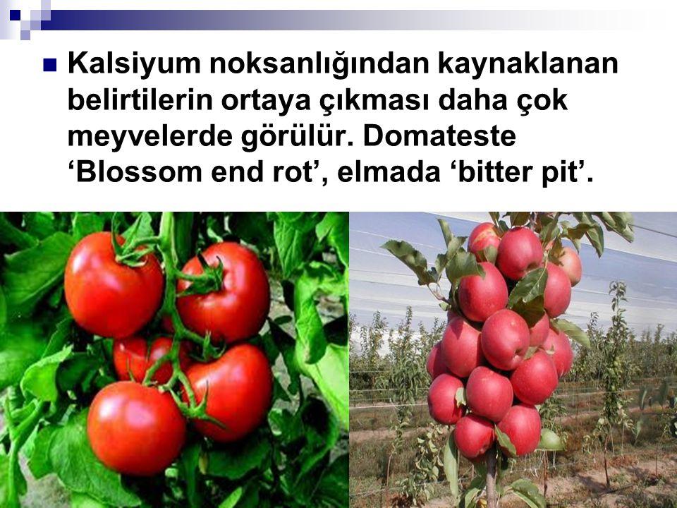 Kalsiyum noksanlığından kaynaklanan belirtilerin ortaya çıkması daha çok meyvelerde görülür. Domateste 'Blossom end rot', elmada 'bitter pit'.