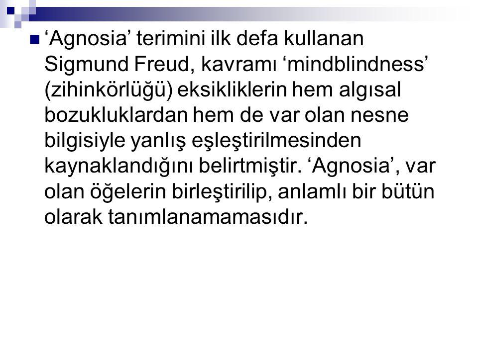 'Agnosia' terimini ilk defa kullanan Sigmund Freud, kavramı 'mindblindness' (zihinkörlüğü) eksikliklerin hem algısal bozukluklardan hem de var olan ne