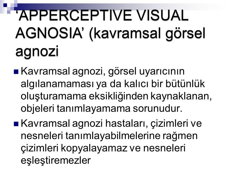 Kavramsal agnozi, görsel uyarıcının algılanamaması ya da kalıcı bir bütünlük oluşturamama eksikliğinden kaynaklanan, objeleri tanımlayamama sorunudur.