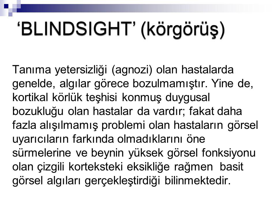 Bu 'blindsight' isimli olay, Sanders ve çalışma arkadaşları tarafından adlandırılmıştır (1974).