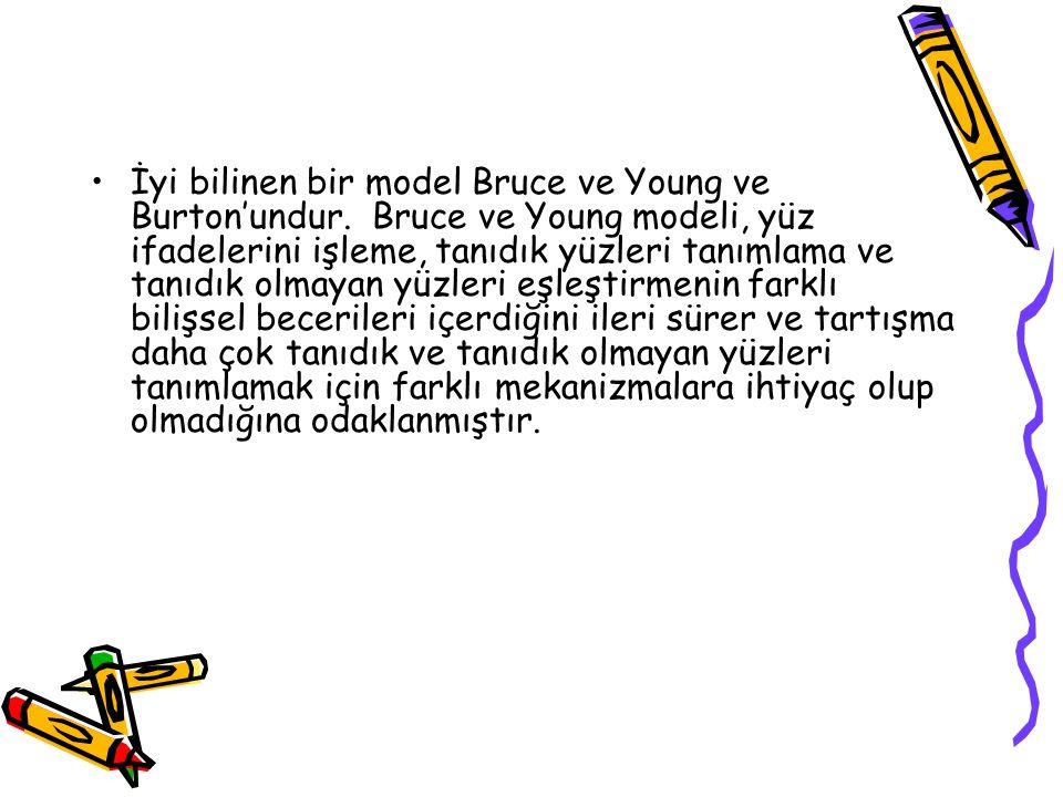 İyi bilinen bir model Bruce ve Young ve Burton'undur. Bruce ve Young modeli, yüz ifadelerini işleme, tanıdık yüzleri tanımlama ve tanıdık olmayan yüzl