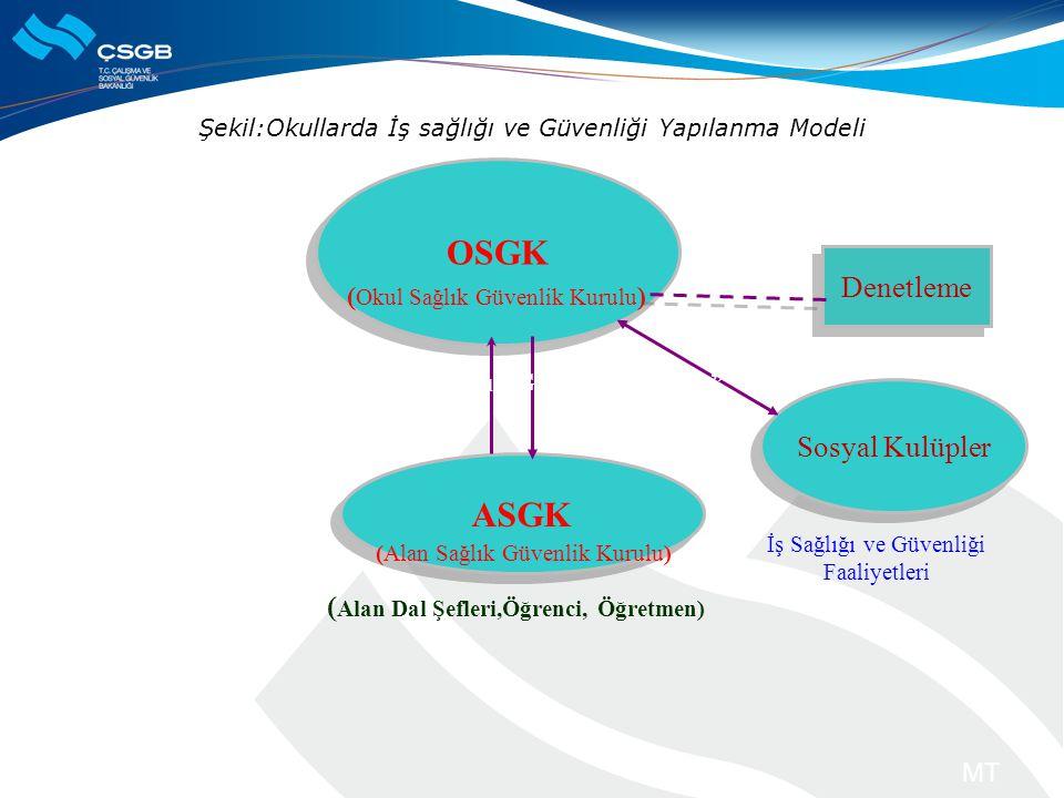 Şekil:Okullarda İş sağlığı ve Güvenliği Yapılanma Modeli MT OSGK ASGK Denetleme (Alan Sağlık Güvenlik Kurulu) ( Alan Dal Şefleri,Öğrenci, Öğretmen) So