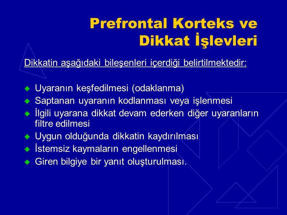 Prefrontal Korteks ve Dikkat İşlevleri Dikkatin aşağıdaki bileşenleri içerdiği belirtilmektedir:  Uyaranın keşfedilmesi (odaklanma)  Saptanan uyaranın kodlanması veya işlenmesi  İlgili uyarana dikkat devam ederken diğer uyaranların filtre edilmesi  Uygun olduğunda dikkatin kaydırılması  İstemsiz kaymaların engellenmesi  Giren bilgiye bir yanıt oluşturulması.