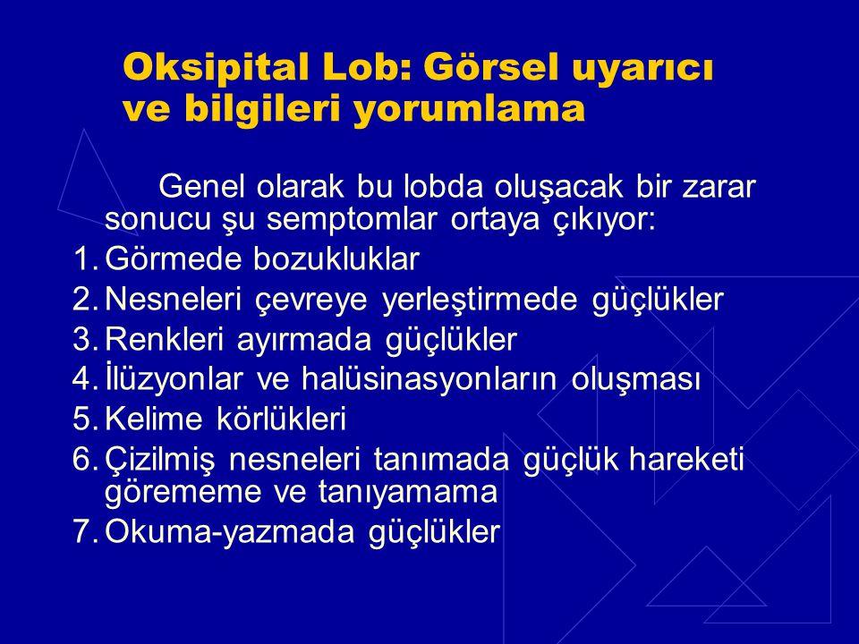 Oksipital Lob: Görsel uyarıcı ve bilgileri yorumlama Genel olarak bu lobda oluşacak bir zarar sonucu şu semptomlar ortaya çıkıyor: 1.Görmede bozuklukl