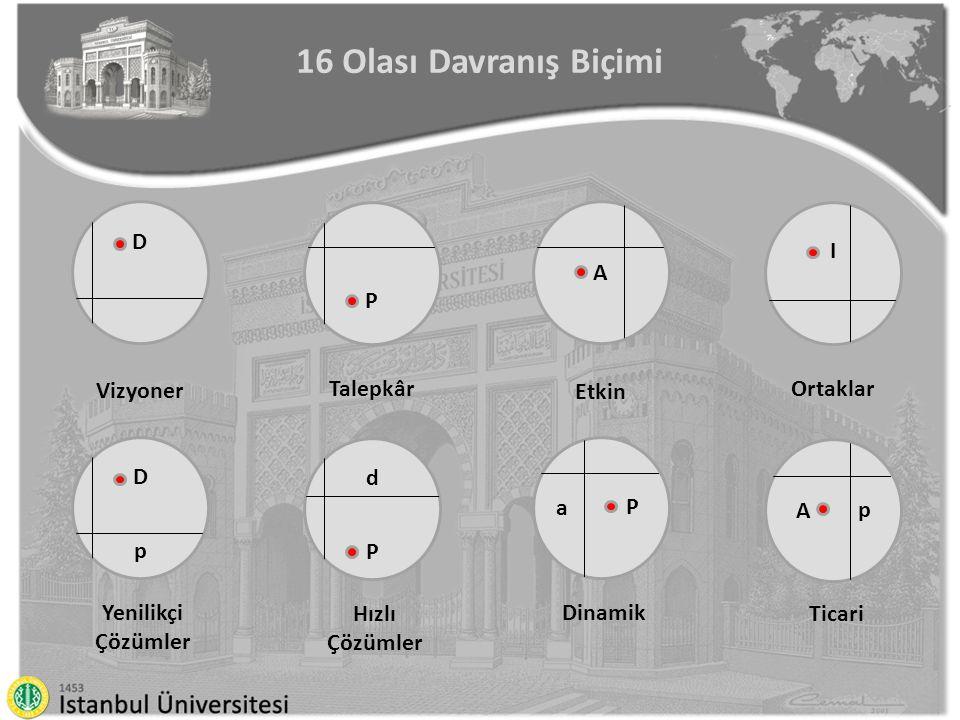 16 Olası Davranış Biçimi D DpDp Vizyoner Yenilikçi Çözümler P dPdP Talepkâr Hızlı Çözümler A Etkin Dinamik I Ortaklar Ticari P a p A