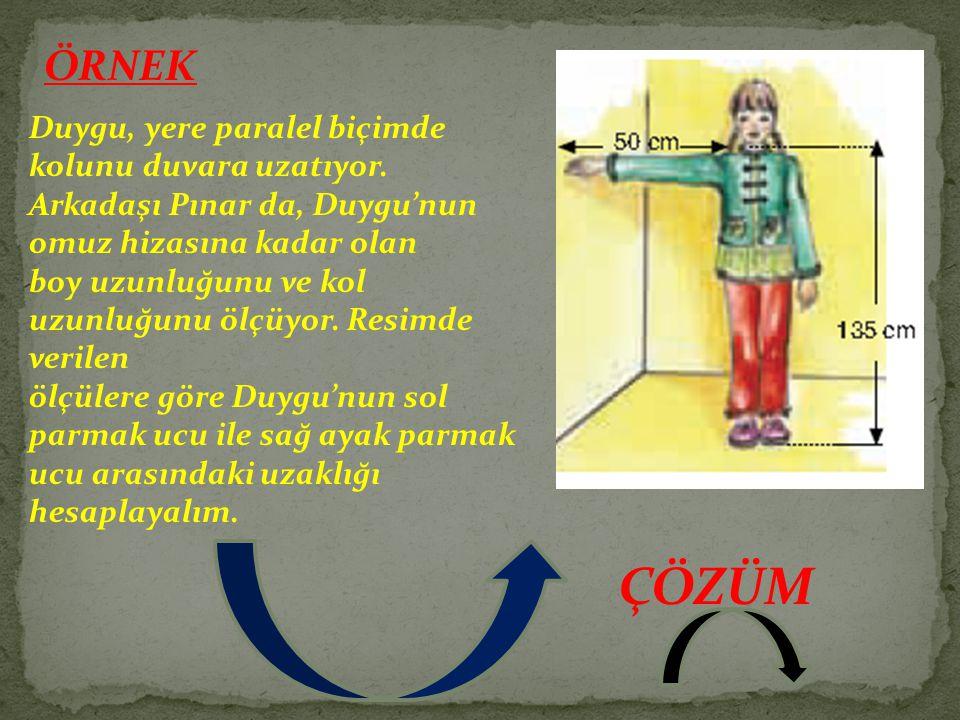 ÖRNEK Duygu, yere paralel biçimde kolunu duvara uzatıyor. Arkadaşı Pınar da, Duygu'nun omuz hizasına kadar olan boy uzunluğunu ve kol uzunluğunu ölçüy