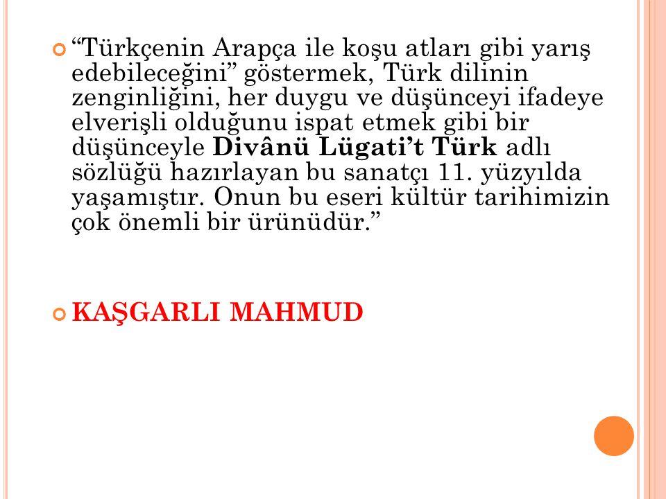 """""""Türkçenin Arapça ile koşu atları gibi yarış edebileceğini"""" göstermek, Türk dilinin zenginliğini, her duygu ve düşünceyi ifadeye elverişli olduğunu is"""