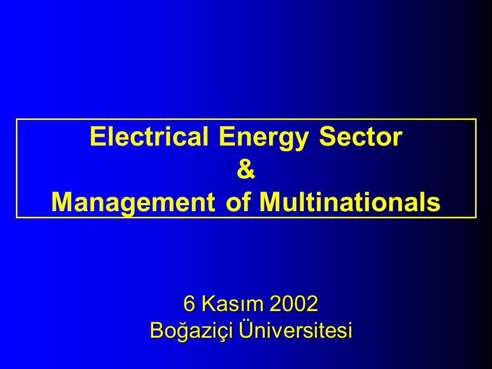 6 Kasım 2002 Boğaziçi Üniversitesi Electrical Energy Sector & Management of Multinationals