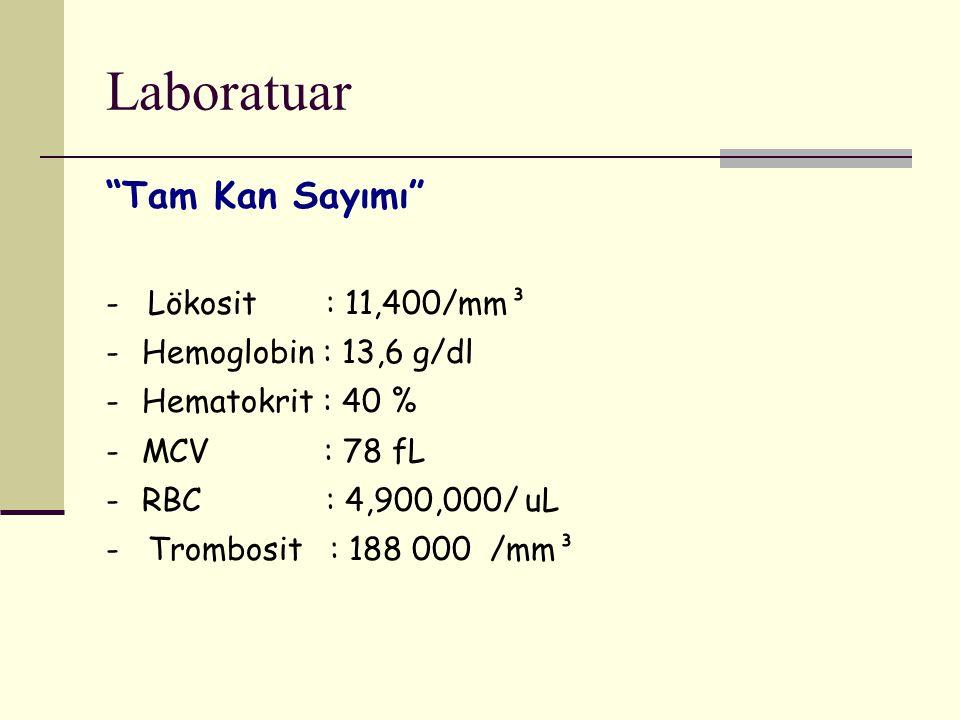 "Laboratuar ""Tam Kan Sayımı"" - Lökosit : 11,400/mm³ -Hemoglobin : 13,6 g/dl -Hematokrit : 40 % -MCV : 78 fL -RBC : 4,900,000/ uL - Trombosit : 188 000/"