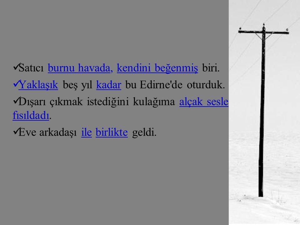 S atıcı burnu havada, kendini beğenmiş biri. Y aklaşık beş yıl kadar bu Edirne'de oturduk. D ışarı çıkmak istediğini kulağıma alçak sesle fısıldadı. E