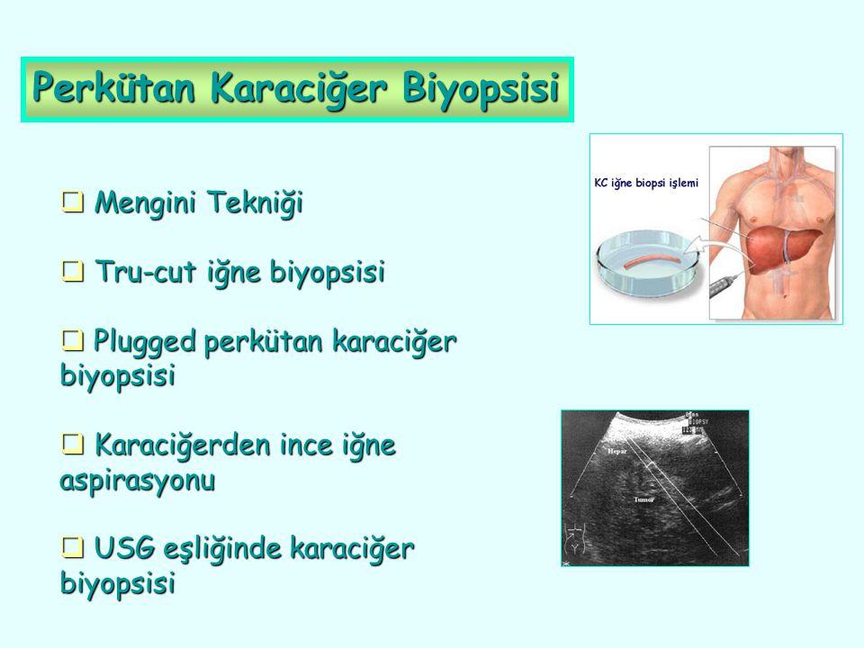 Perkütan Karaciğer Biyopsisi  Mengini Tekniği  Tru-cut iğne biyopsisi  Plugged perkütan karaciğer biyopsisi  Karaciğerden ince iğne aspirasyonu 