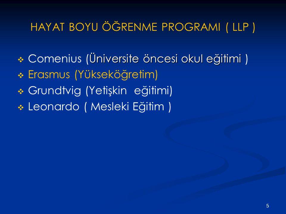 5 HAYAT BOYU ÖĞRENME PROGRAMI ( LLP )  Üniversite öncesi okul eğitimi  Comenius (Üniversite öncesi okul eğitimi )   Erasmus (Yükseköğretim)   Grundtvig (Yetişkin eğitimi)   Leonardo ( Mesleki Eğitim )
