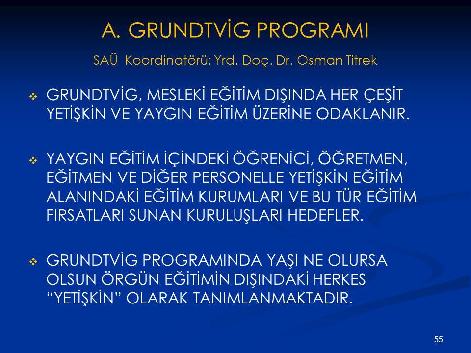A. GRUNDTVİG PROGRAMI SAÜ Koordinatörü: Yrd. Doç. Dr. Osman Titrek   GRUNDTVİG, MESLEKİ EĞİTİM DIŞINDA HER ÇEŞİT YETİŞKİN VE YAYGIN EĞİTİM ÜZERİNE O