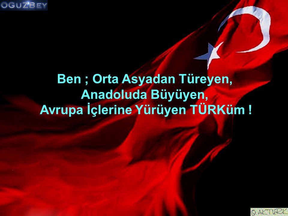 Ben ; Orta Asyadan Türeyen, Anadoluda Büyüyen, Avrupa İçlerine Yürüyen TÜRKüm !