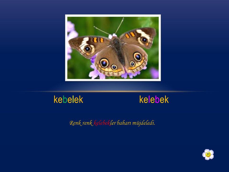 kebelekkelebek Renk renk kelebekler baharı müjdeledi.