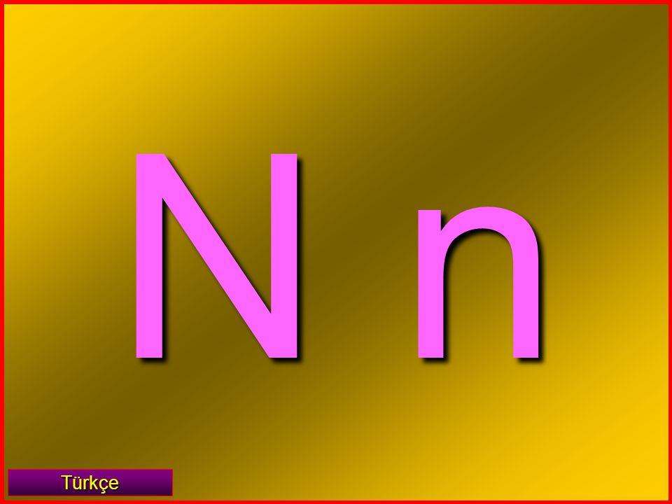 Nn Türkçe
