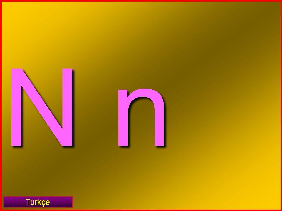 N n Türkçe