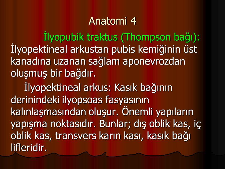Anatomi 4 İlyopubik traktus (Thompson bağı): İlyopektineal arkustan pubis kemiğinin üst kanadına uzanan sağlam aponevrozdan oluşmuş bir bağdır.