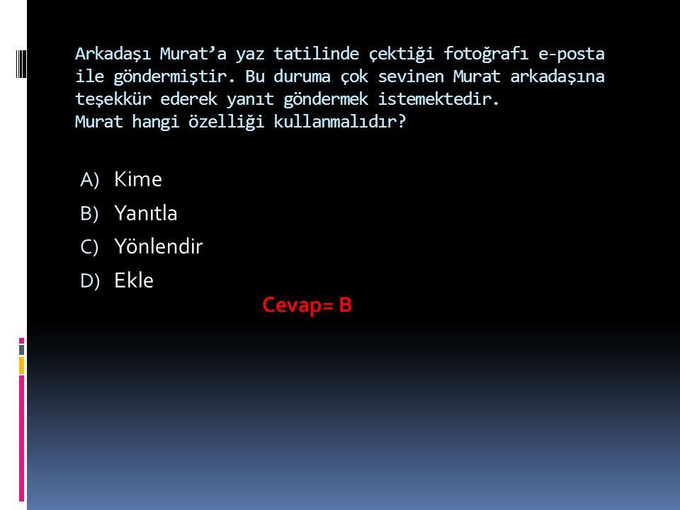 Arkadaşı Murat'a yaz tatilinde çektiği fotoğrafı e-posta ile göndermiştir.