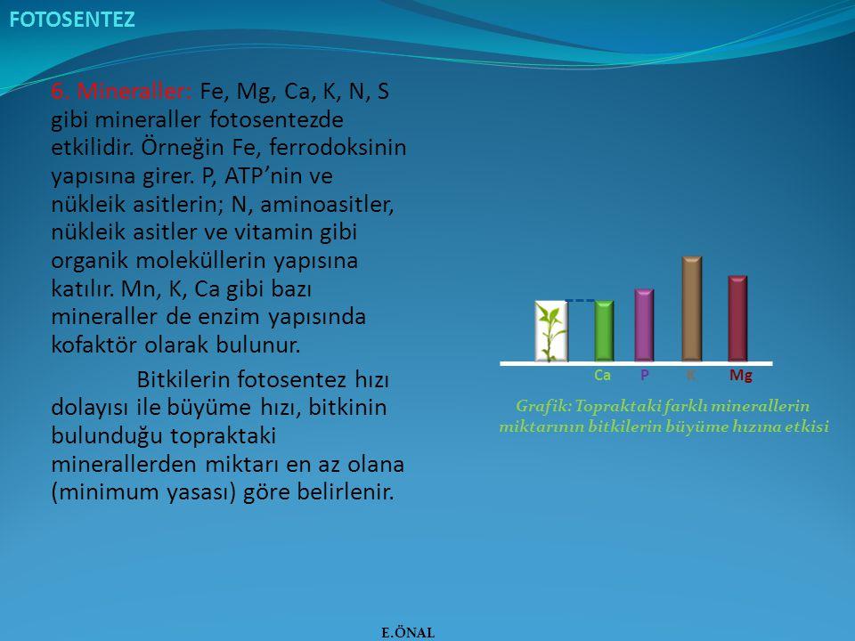 6. Mineraller: Fe, Mg, Ca, K, N, S gibi mineraller fotosentezde etkilidir. Örneğin Fe, ferrodoksinin yapısına girer. P, ATP'nin ve nükleik asitlerin;