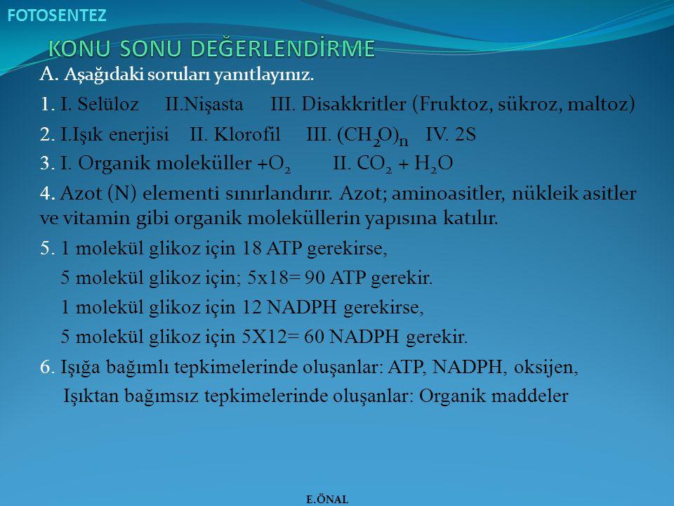 A. Aşağıdaki soruları yanıtlayınız. 1. I. Selüloz II.Nişasta III. Disakkritler (Fruktoz, sükroz, maltoz) 2. I.Işık enerjisi II. Klorofil III. (CH O) I