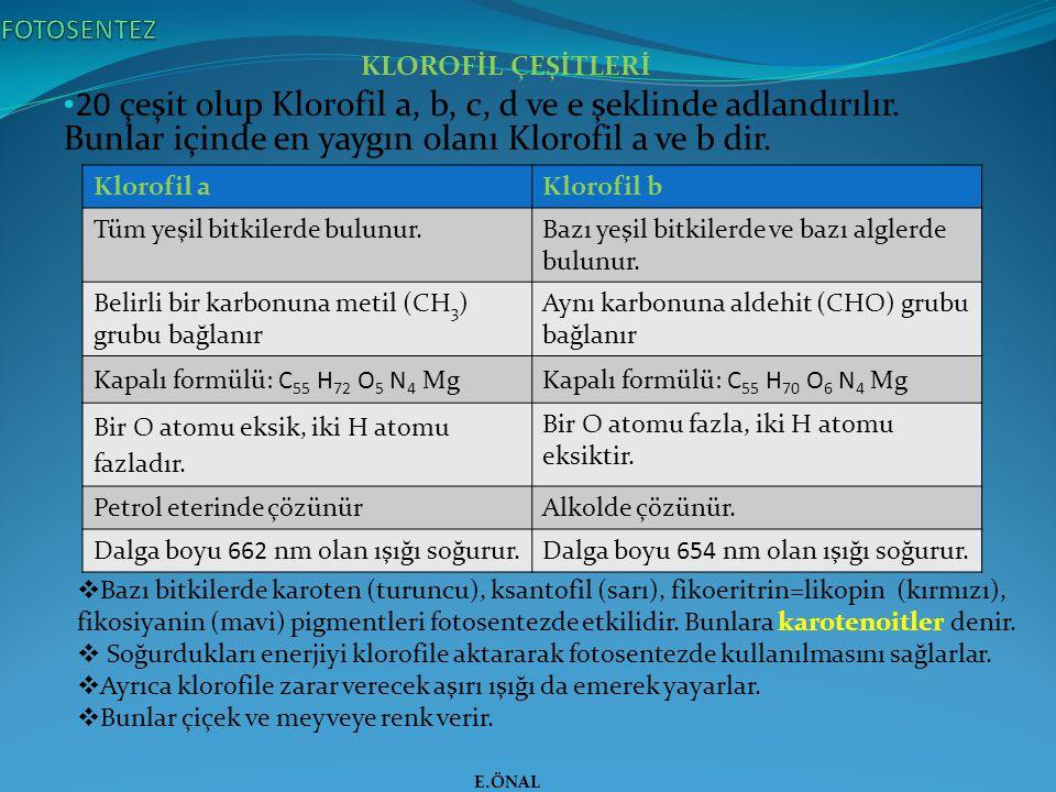 KLOROFİL ÇEŞİTLERİ 20 çeşit olup Klorofil a, b, c, d ve e şeklinde adlandırılır. Bunlar içinde en yaygın olanı Klorofil a ve b dir. E.ÖNAL Klorofil aK