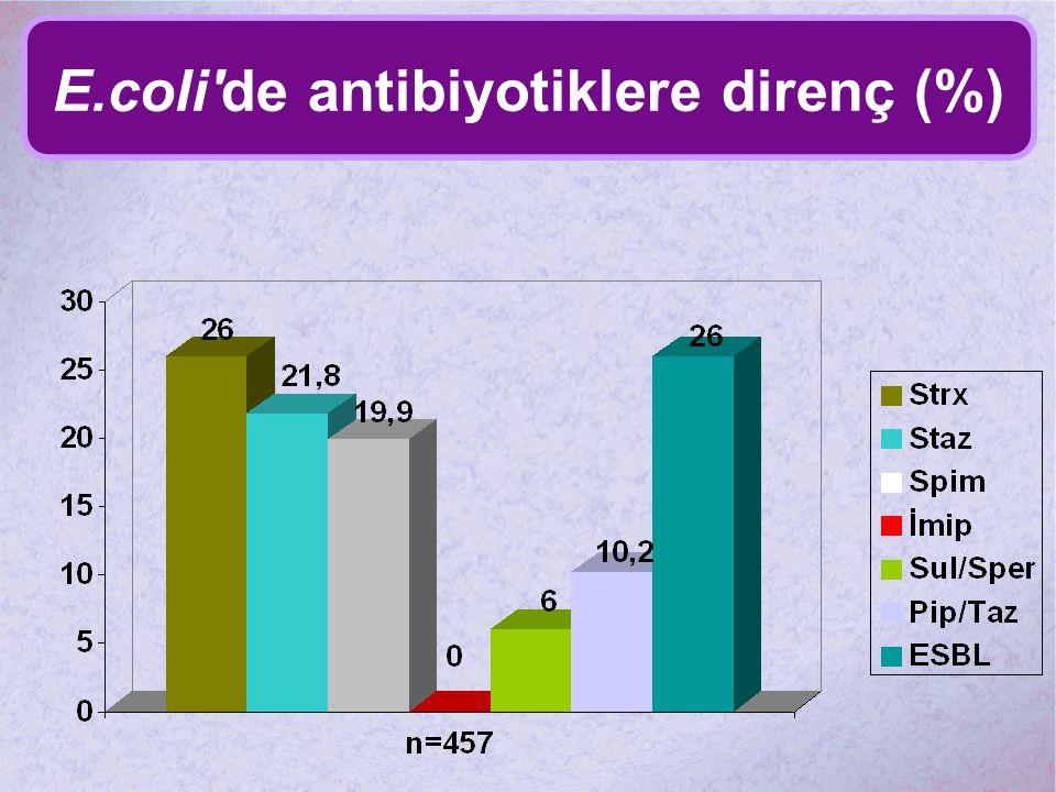E.coli'de antibiyotiklere direnç (%)