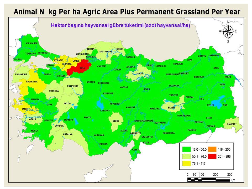 Hektar başına hayvansal gübre tüketimi (azot hayvansal/ha)