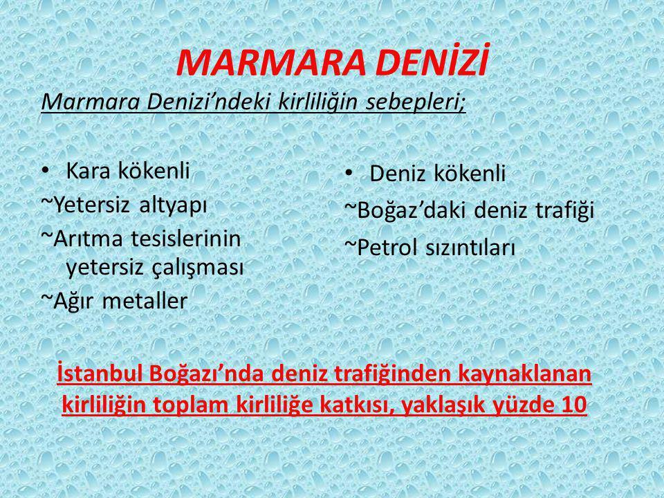 MARMARA DENİZİ Kara kökenli ~Yetersiz altyapı ~Arıtma tesislerinin yetersiz çalışması ~Ağır metaller Deniz kökenli ~Boğaz'daki deniz trafiği ~Petrol sızıntıları Marmara Denizi'ndeki kirliliğin sebepleri; İstanbul Boğazı'nda deniz trafiğinden kaynaklanan kirliliğin toplam kirliliğe katkısı, yaklaşık yüzde 10