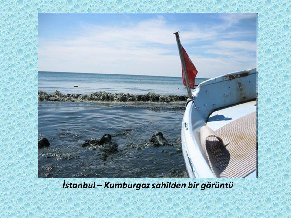 İstanbul – Kumburgaz sahilden bir görüntü