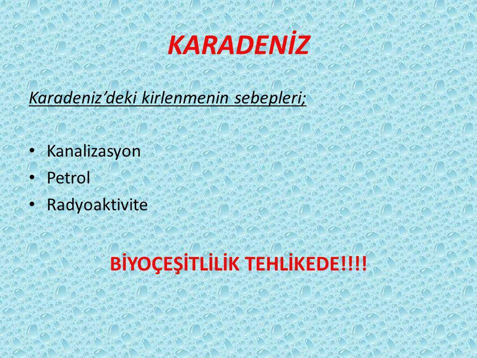 KARADENİZ Karadeniz'deki kirlenmenin sebepleri; Kanalizasyon Petrol Radyoaktivite BİYOÇEŞİTLİLİK TEHLİKEDE!!!!