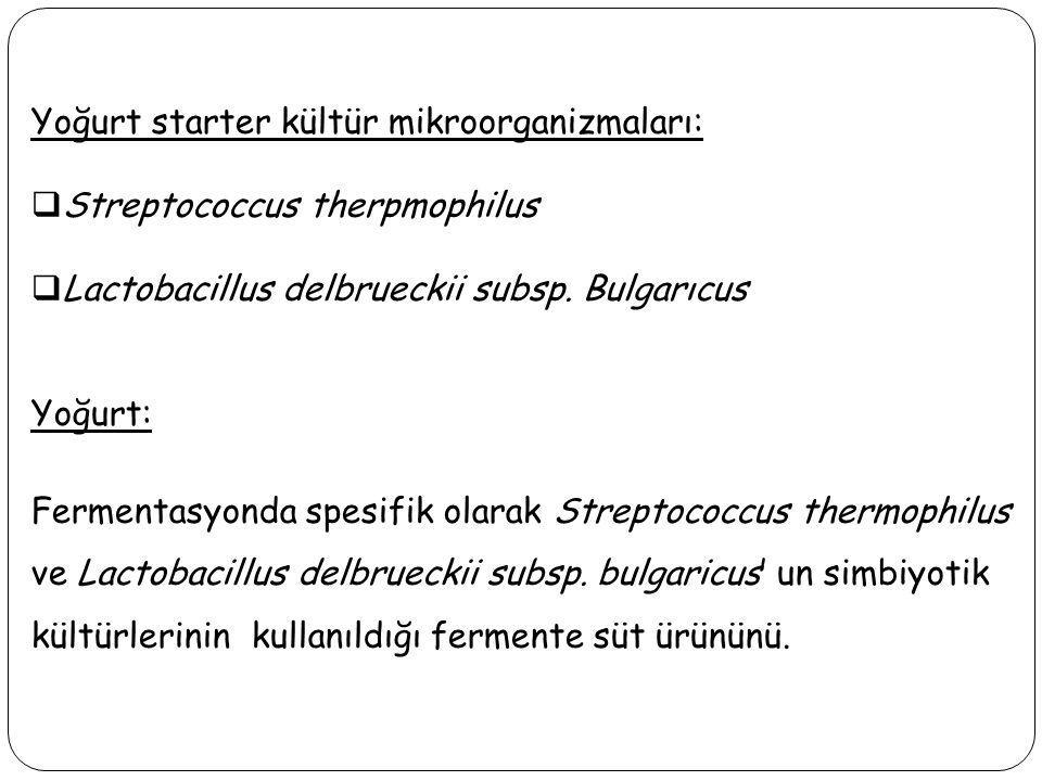 Yoğurt starter kültür mikroorganizmaları:  Streptococcus therpmophilus  Lactobacillus delbrueckii subsp. Bulgarıcus Yoğurt: Fermentasyonda spesifik
